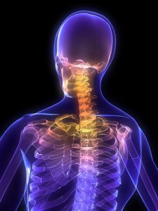 neck and back pain shown on purple skeleton